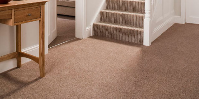 Carpet Cleaning and Upholstery Cleaning Services